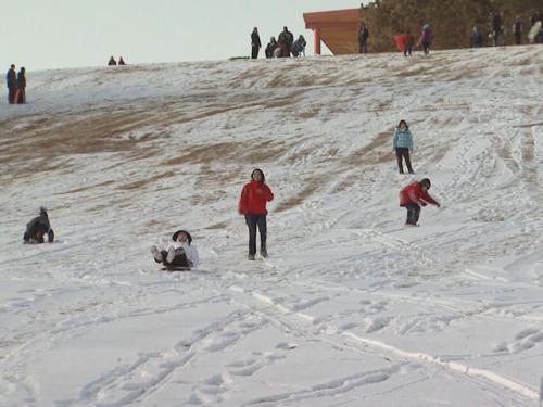 Top Free Winter Activities For Families In Denver
