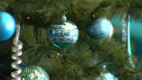Top Spots To Shop For Christmas Decorations With The Family In The Denver Area